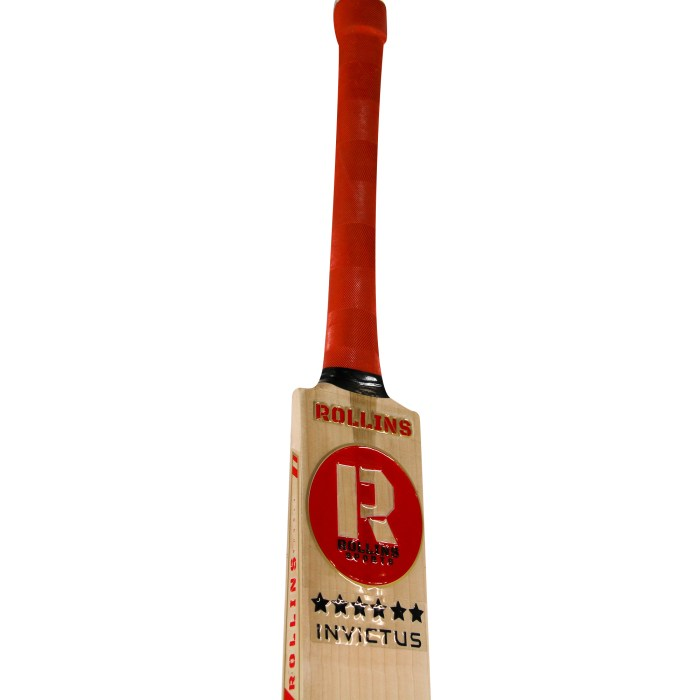 Howard Rollins Sports Invictus Cricket Bat