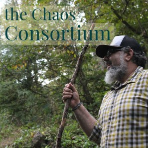 ChaosConsortium1