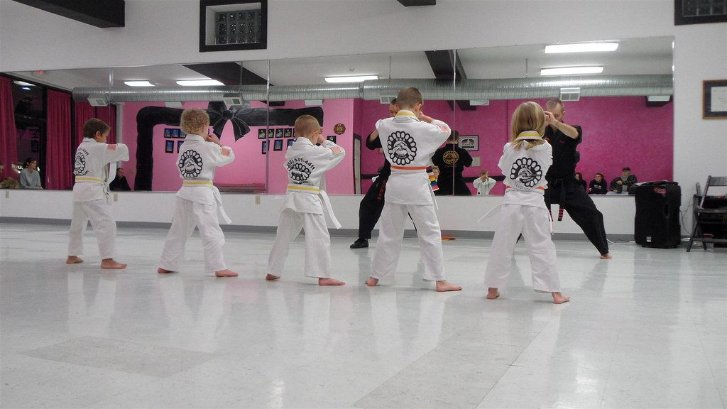 How Much Do Karate Lessons Cost In 2020?