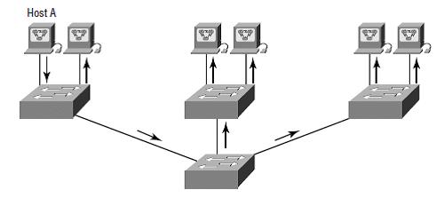 vlan1 - flat network