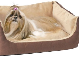 HEATED ORTHOPEDIC DOG BED