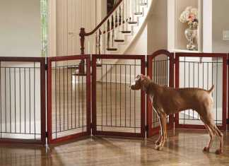 Dog Playpens Are A Must Have For Every Dog Owner