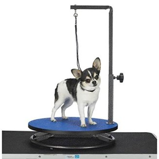 Equipment Dog Grooming Table