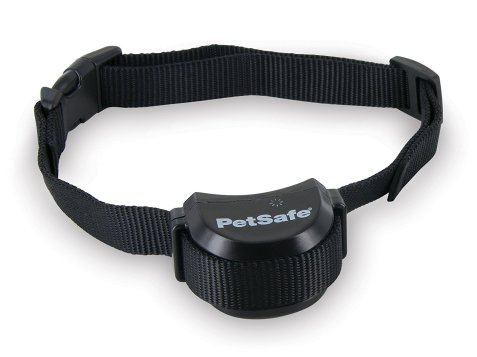 Best Shock Collar Review
