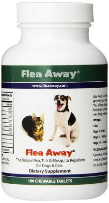 Best Flea Pill for Dogs Reviews