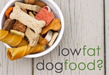 Buying the best low fat dog food