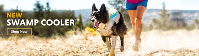 Best Dog Cooling Vest
