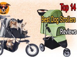 Top 14 Best Dog Strollers Reviews
