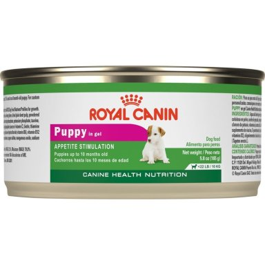 Best Wet Food for Dogs Review