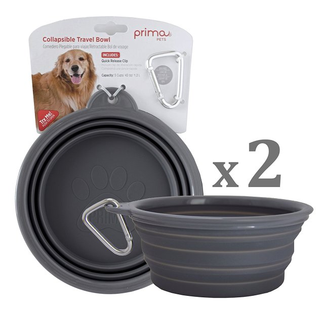BEST COLLAPSIBLE DOG BOWLS