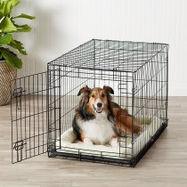 Best Dog Crate Reviews