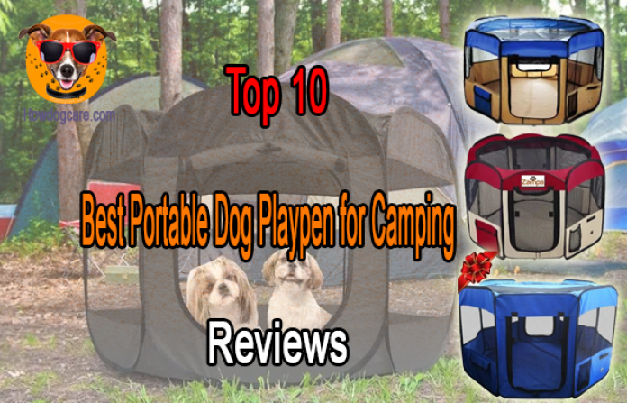 Top 10 Best Portable Dog Playpen for Camping Reviews