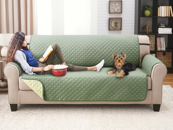 Dog Couch Cover