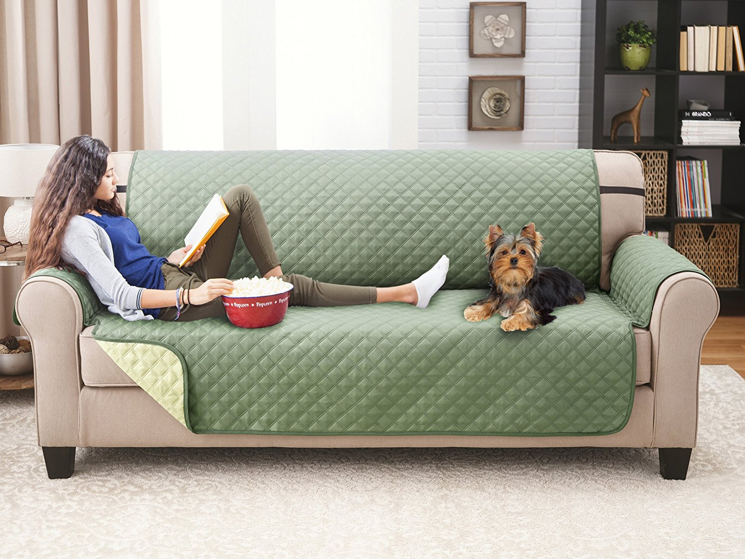 Attractive Best Dog Couch Cover By Elaine Karen