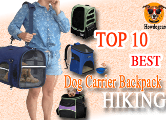 Best Dog Carrier Backpack Hiking