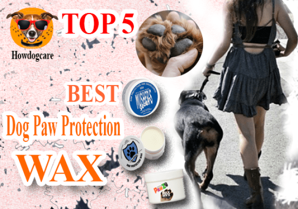 Best Dog Paw Protection Wax