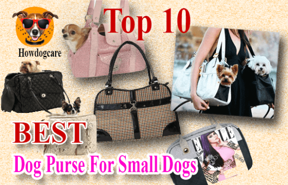 4d283f38de Top 10 Best Dog Purse For Small Dogs When You want To Out On The Go ...