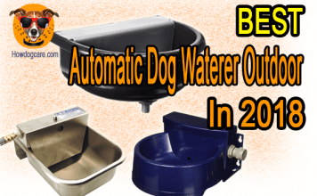 Best Automatic Dog Waterer Outdoor In 2018