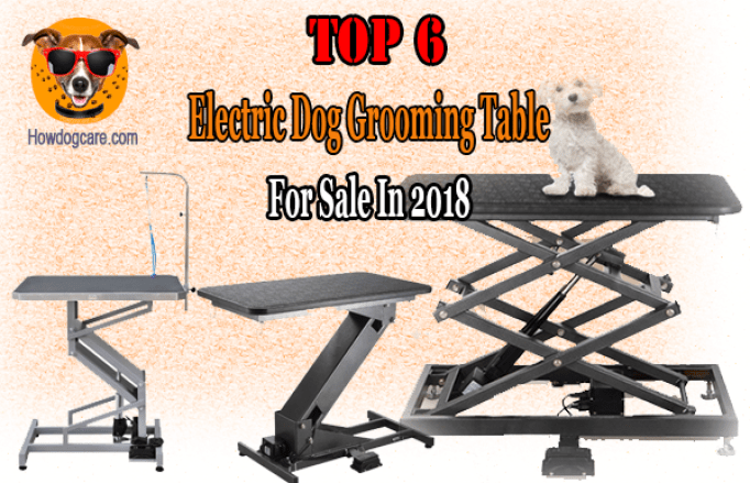 Best Electric Dog Grooming TableFor Sale In 2018