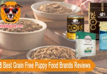 Top 8 Best Grain Free Puppy Food Brands Reviews