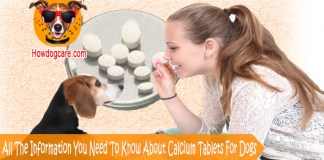 All The Information You Need To Know About Calcium Tablets For Dogs