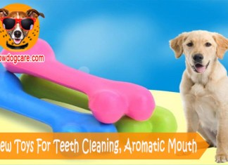 Dog Chew Toys For Teeth Cleaning, Aromatic Mouth
