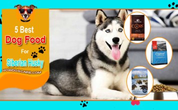 Top 5 Best Food For Siberian Husky Reviews