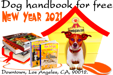 how to dog care handbook for free