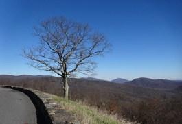 Blue Ridge Parkway-03