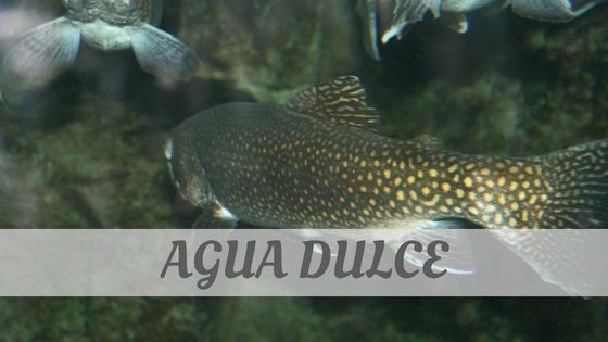 How To Say Agua Dulce