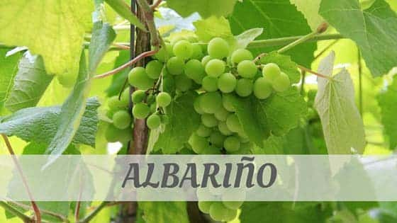 How To Say Albariño