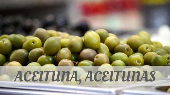 How To Say Aceituna