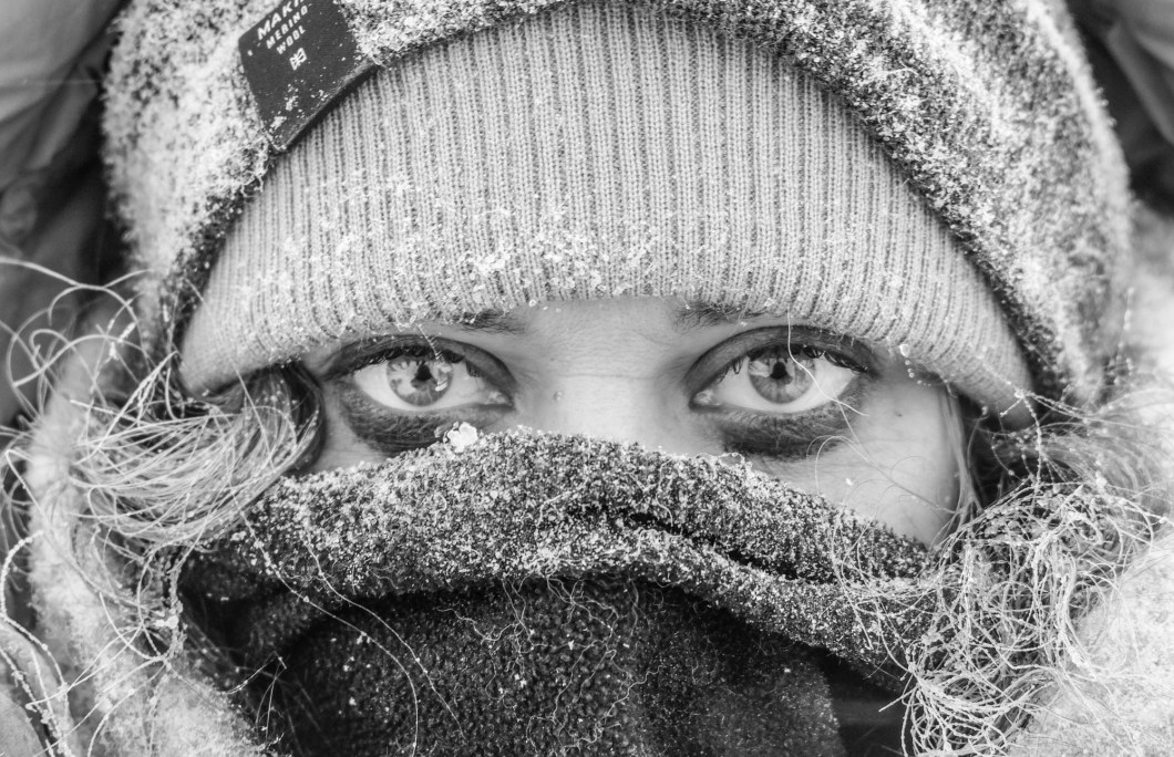 Close-up in the cold