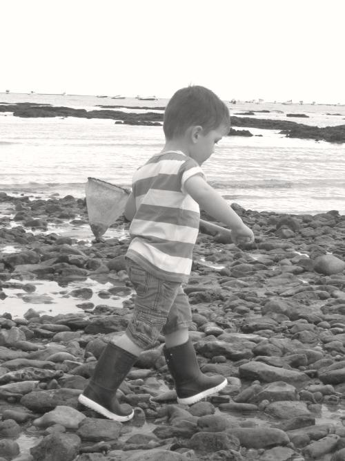 jouer-avec-la-nature-pêche-à-pied-enfant
