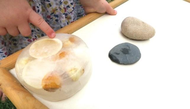 coquillage emprisonné dans la glace jeu enfant expérience sensorielle