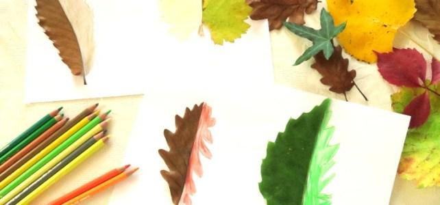 dessins de feuilles dautomne à compléter