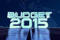 Simplified Budget For 2015