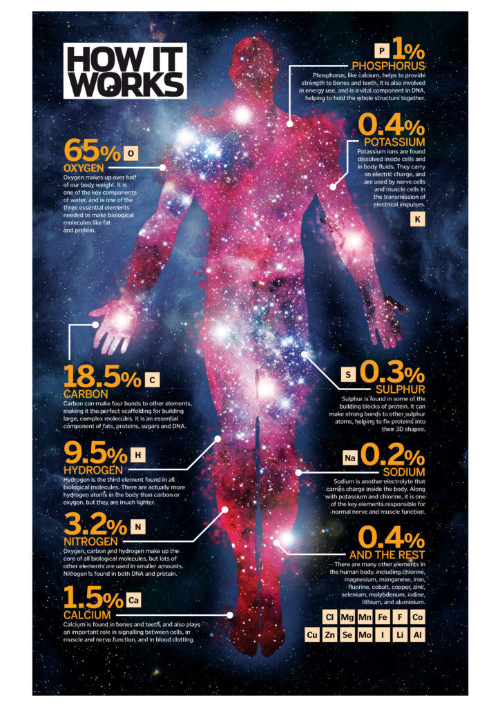 Image result for Human body with space elements