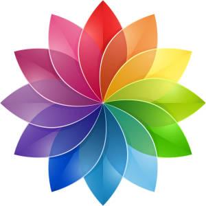 HIWI Color Wheel Flower