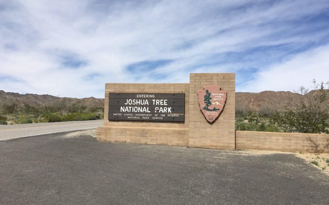 A Desert Quick Trip in Joshua Tree
