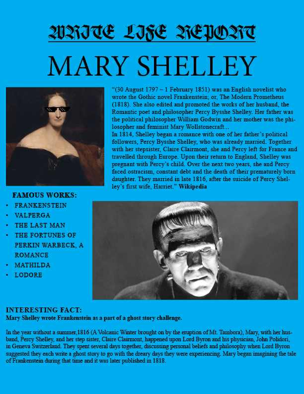 Shelley REPORT ENTRY