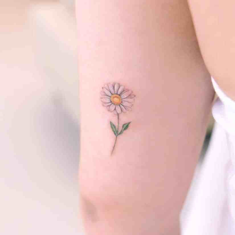 Daisy Tattoo 2020062816 - The Best Daisy Tattoo Ideas and Meaning