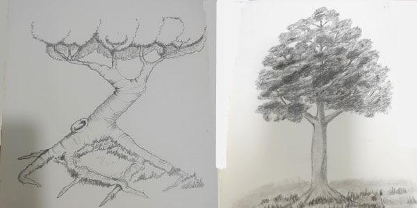 Draw-a-Tree-20200727