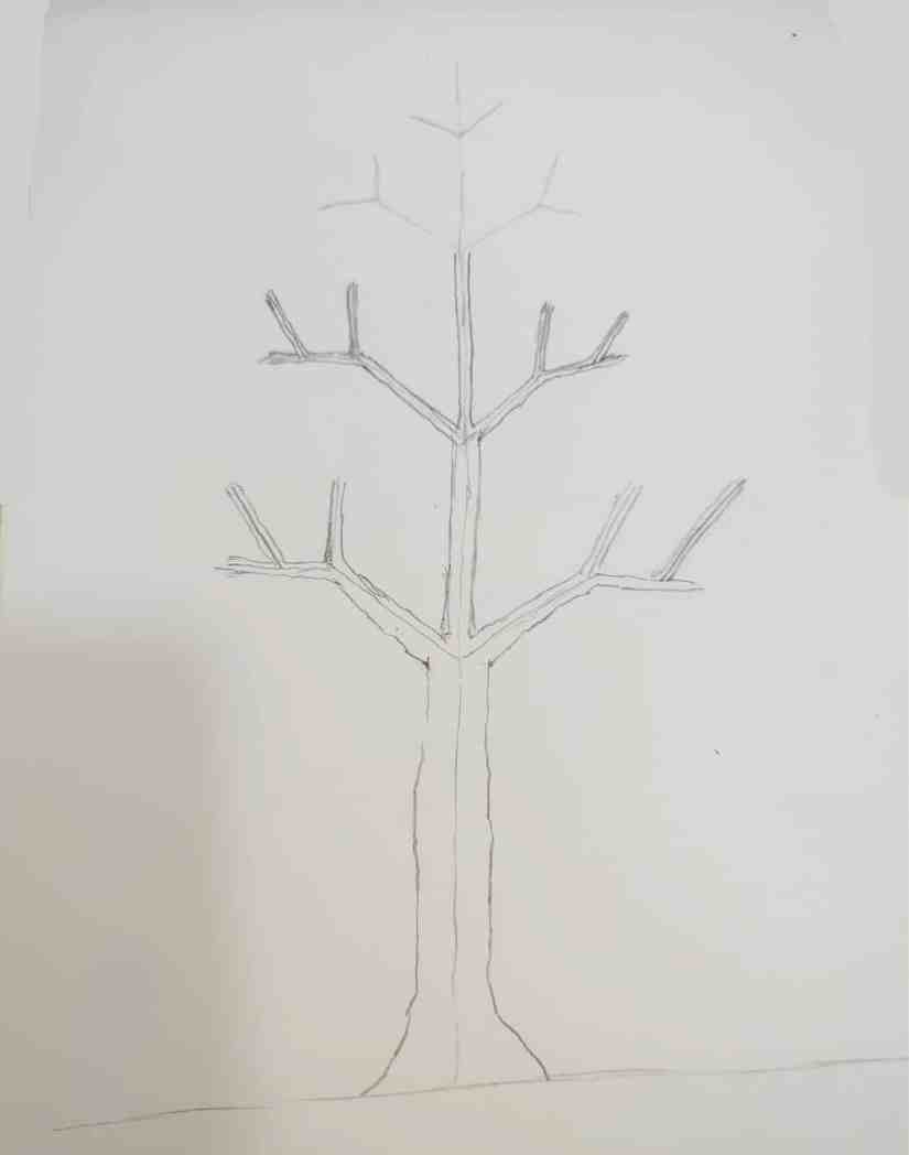Draw a Tree 2020072706 - How to Draw a Tree: Step by Step Practice for Beginners