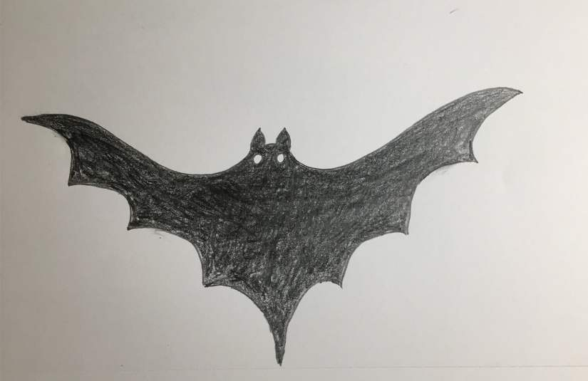 How To Draw Bats For Halloween Step By Step Howlifestyles