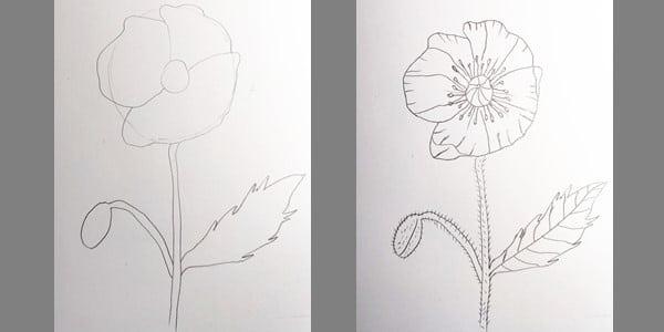 Draw-Poppy-Easy-20201213