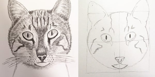Draw-a-Cat-Face-20201223