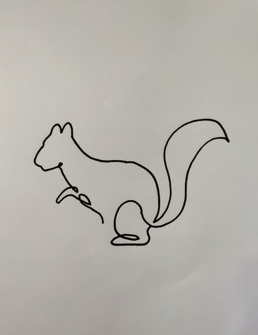 One line drawing Squirrel 2021031902 scaled - Learn How to One Line Drawing Animals