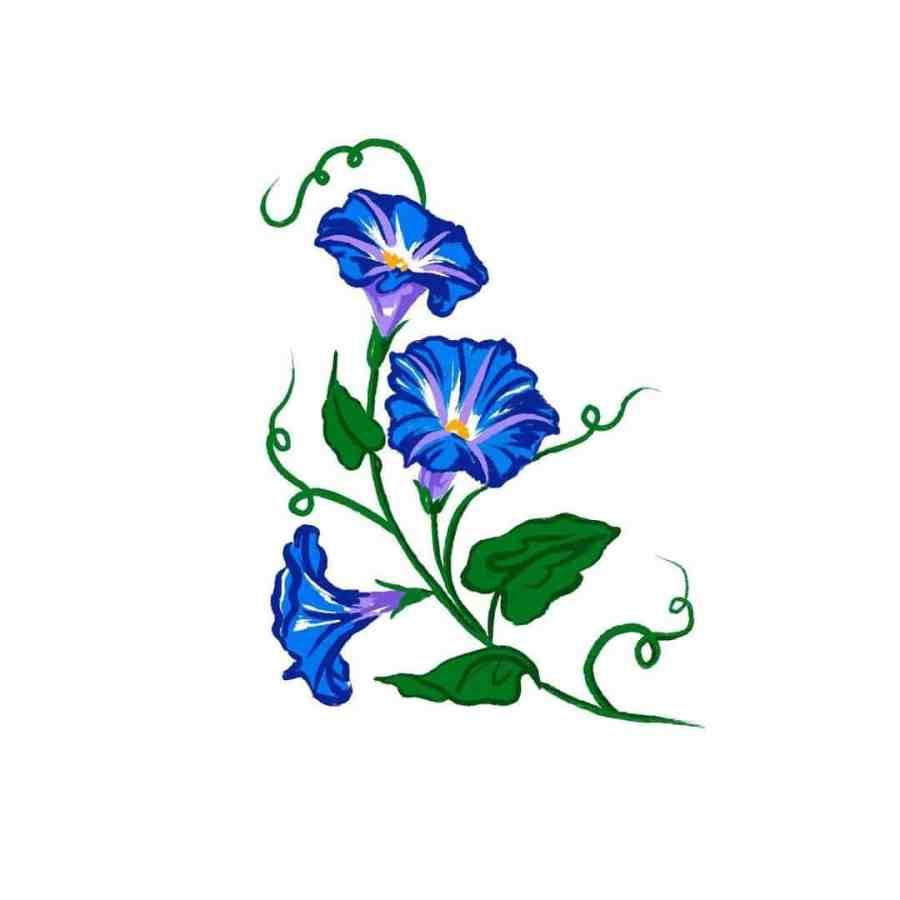 September Birth Flower Tattoos 2021073102 - September Birth Flower Tattoos: Morning Glory Tattoo