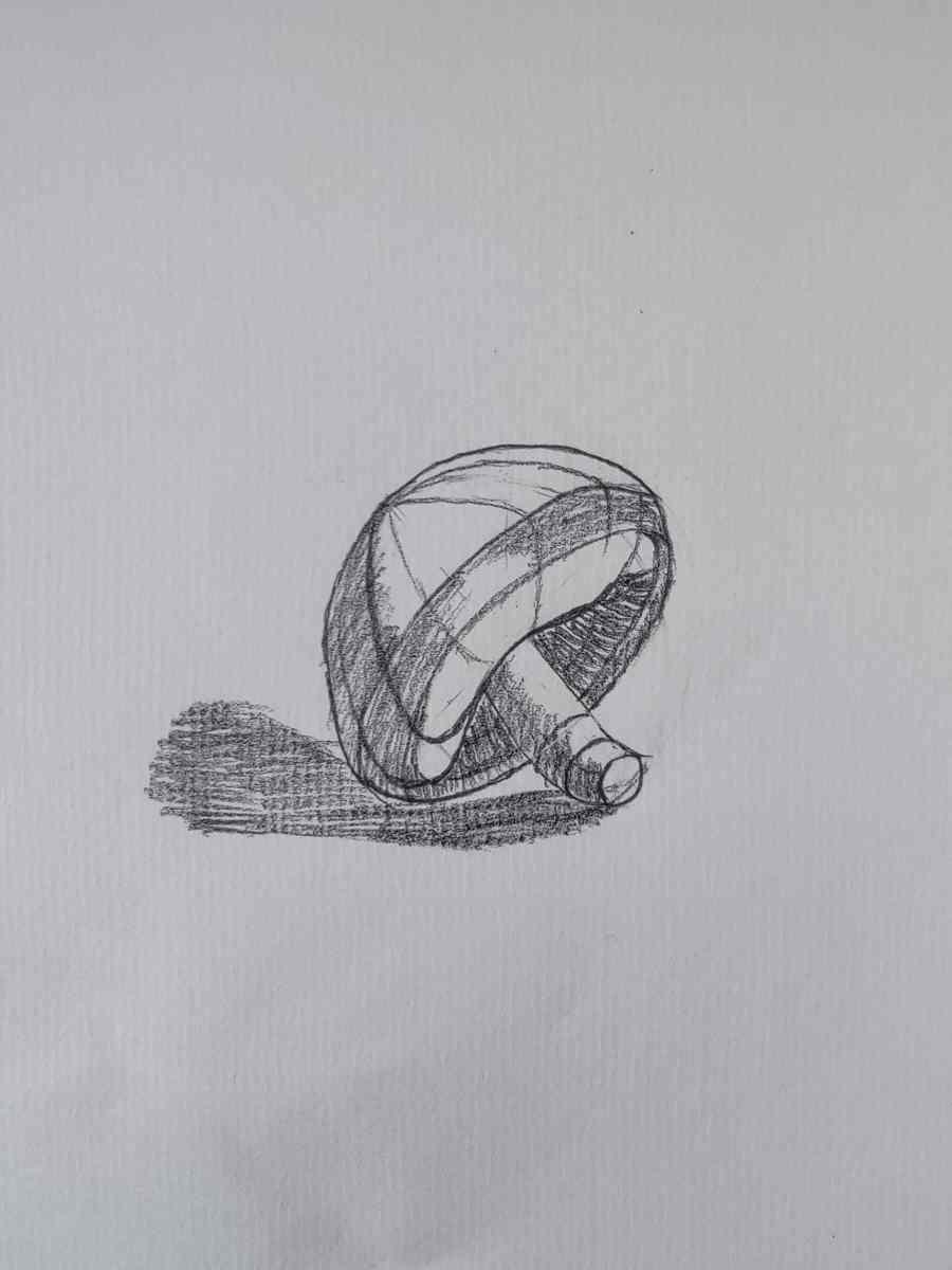 How to Draw a Mushroom 2021081001 - How to Draw a Mushroom for Beginners